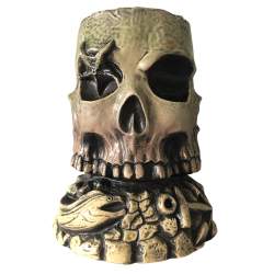 Front - Infinity Skull - Devil's Reef - Limited Edition