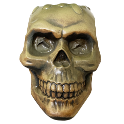 Front - Haunted Skull - Eekum Bookum - Green Edition