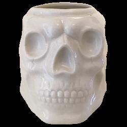 Front - Skull - La Morgue - White Edition