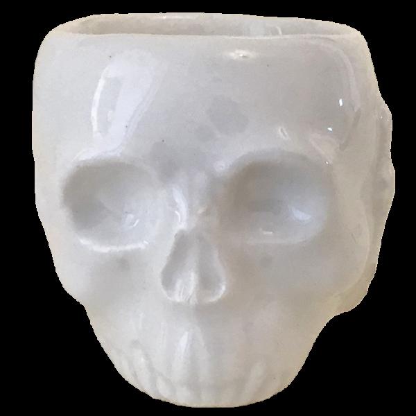 Front - Skull Shot - La Morgue - White Edition