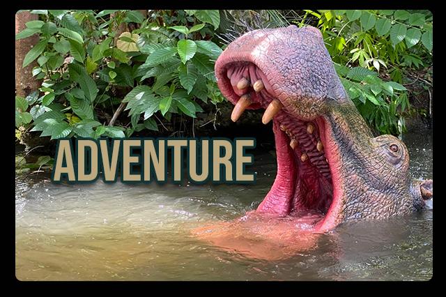 Adventure Category