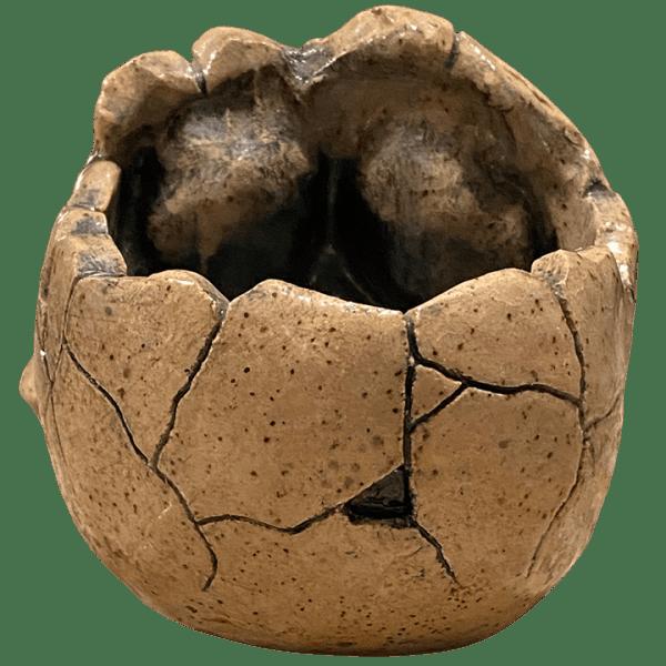 Back - Trepanning Accident Skull - VanTiki - Handmade Edition